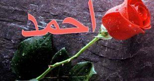 صوره صور اسم احمد مكتوب , جمال الاسم بالصور لاحمد