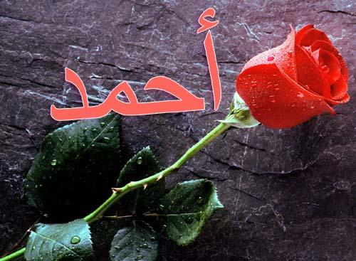بالصور صور اسم احمد مكتوب , جمال الاسم بالصور لاحمد 41
