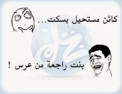 بالصور نكت فيس بوك جزائرية اضحك مع الجزائريين 83 4