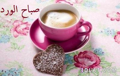 صورة صور صباح الورد ياحلاوة الورد وياجمال هذه الصور