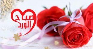صوره صور صباح الورد ياحلاوة الورد وياجمال هذه الصور