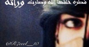 بالصور اجمل اشعار الحب البدوية , قصائد غزل بدويه 159 2 310x165