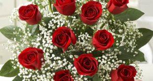صور ورد جديدة , اجمل صور باقات زهور