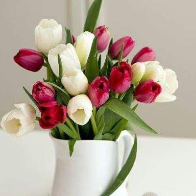 بالصور صور ورد جديدة , اجمل صور باقات زهور 193 18