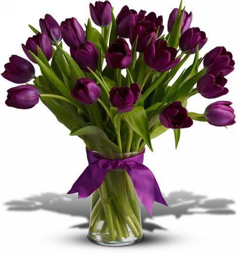 بالصور صور ورد جديدة , اجمل صور باقات زهور 193 21