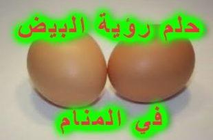 صورة تفسير حلم البيض للعزباء , تاويل ابن سيرين لرؤية البيض في المنام