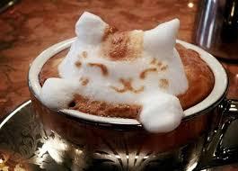 بالصور صور قهوة , اجمل صور فنجان قهوة 259 17