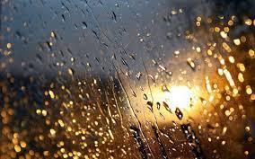 بالصور صور عن الامطار , اجمل صور مطر 281 14