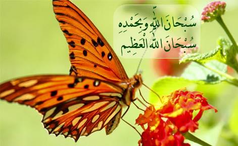 بالصور صور مكتوب عليها سبحان الله وبحمده سبحان الله العظيم , شاهد اجمل صور تسبيح 297 6
