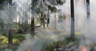تفسير حلم الدخان الابيض , علامة الدخان فى الحلم