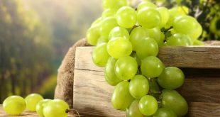 بالصور تفسير اكل العنب الاخضر في المنام , تناول العنب فى الرؤيا 415 2 310x165