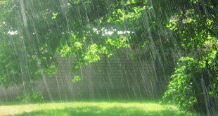 رؤيا المطر الغزير في المنام , تاويل الامطار الغزيرة فى الحلم