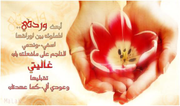 بالصور رسائل اعتذار للحبيب جزائرية , اجمل رسائل الاسف و الاعتذار 1293 5