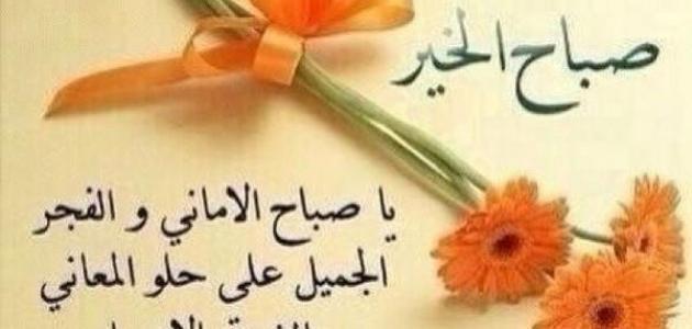 صورة اجمل كلمات الصباح للحبيب , صور متنوعة لصباح الخير