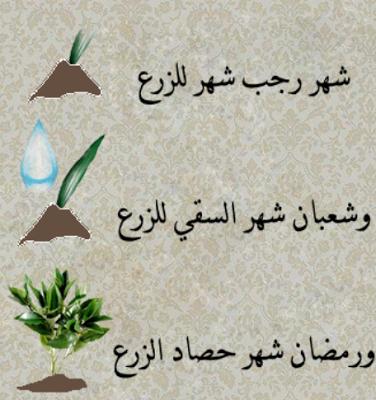 بالصور صور تهاني رمضان , عيد على حبايبك و اكسب قلبهم 1504