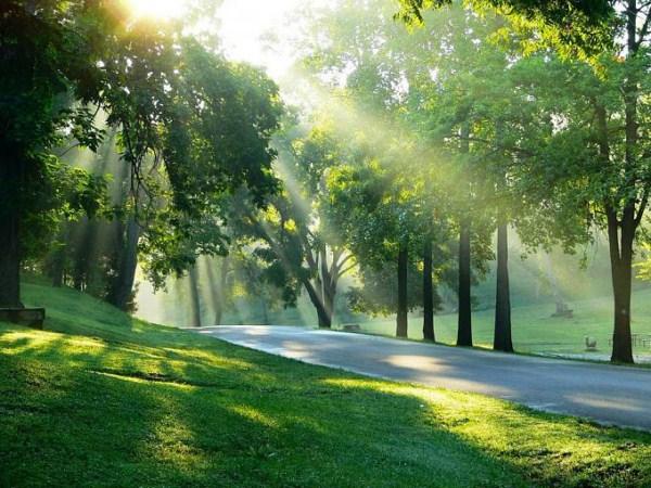 صورة صور نسمات الصباح , الهواء العليل و الصفاء الجميل