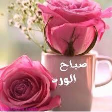 بالصور صور ورد صباح الخير , صبح على معارفك باسهل الطرق 1624 8