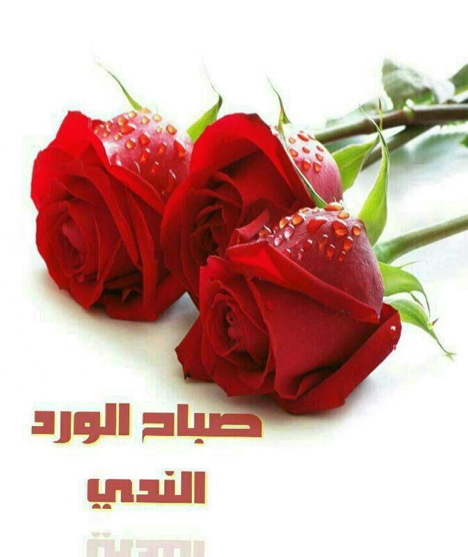 صور صور ورد صباح الخير , صبح على معارفك باسهل الطرق