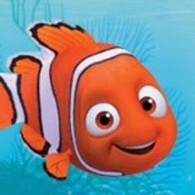 بالصور صور كرتون نيمو , سمكة البهلوان الصغيرة و الشقية جدا