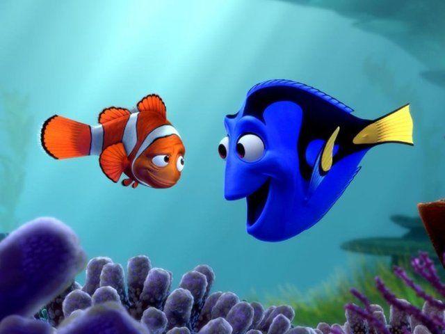 صوره صور كرتون نيمو , سمكة البهلوان الصغيرة و الشقية جدا