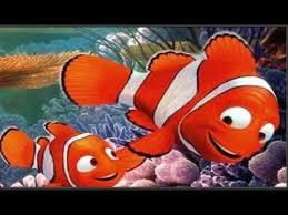 بالصور صور كرتون نيمو , سمكة البهلوان الصغيرة و الشقية جدا 1630 3