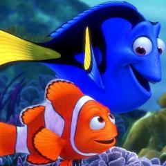 بالصور صور كرتون نيمو , سمكة البهلوان الصغيرة و الشقية جدا 1630 6
