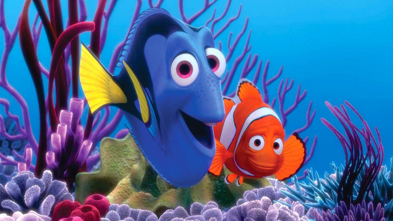 صورة صور كرتون نيمو , سمكة البهلوان الصغيرة و الشقية جدا