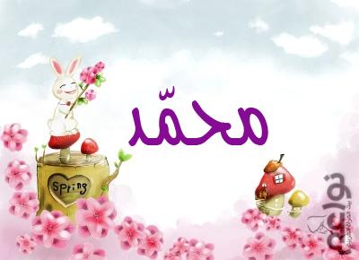 بالصور صورة مكتوب علية محمد حبيبي , بالصور محمد ياحبيبي 1727 5