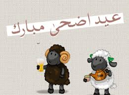 بالصور صور عيد الضحى , الحج و الاضحية ابرز شعائر المناسبة دى 2723 5