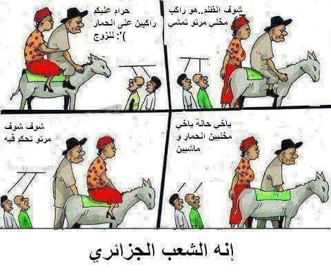 صورة نكت فيس بوك جزائرية اضحك مع الجزائريين