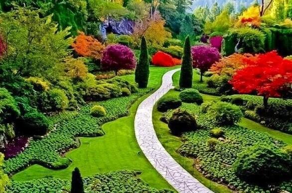 بالصور صور طبيعية جميلة , اماكن ستذهلك من جمالها 2062 3