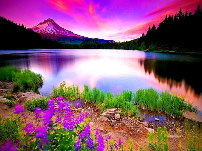 بالصور صور طبيعية جميلة , اماكن ستذهلك من جمالها 2062 4