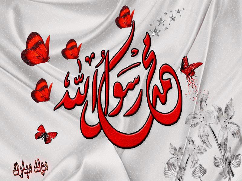 بالصور صور مولد النبي , احتفالات المولد النبوى السنادى غير 2221 1