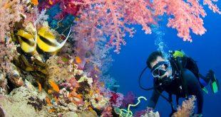 صور شرم الشيخ , جنة حقيقية على الارض مليئة بالمناظر الخلابة