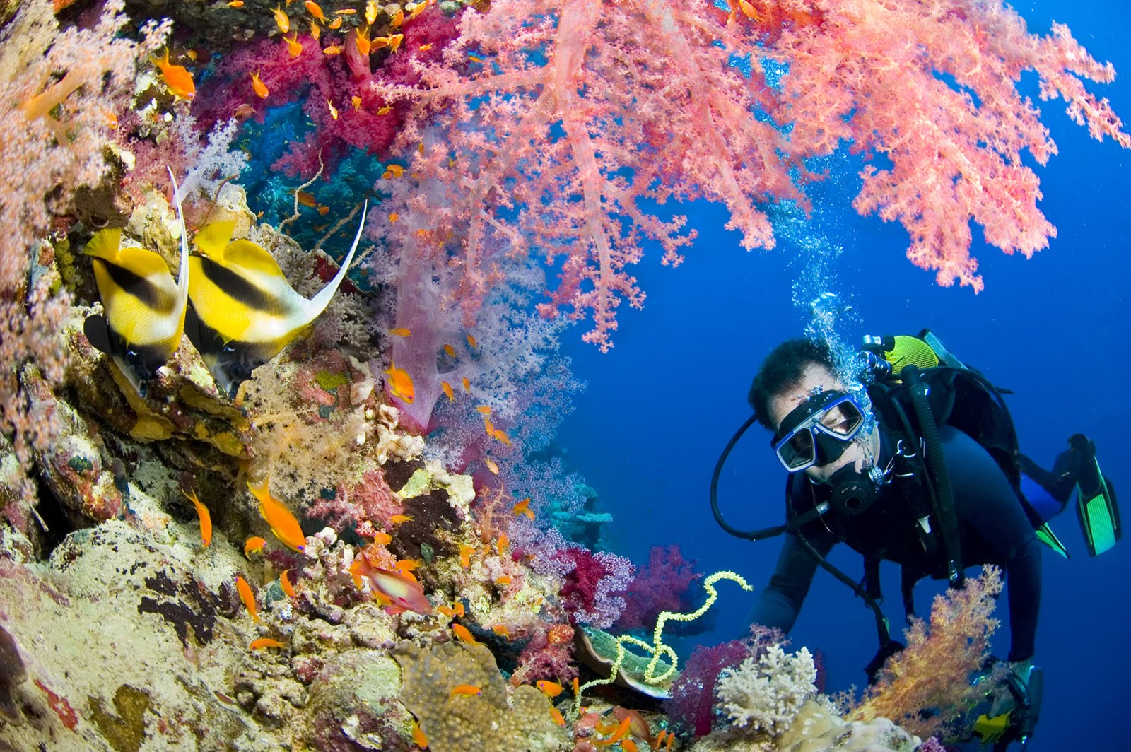 صوره صور شرم الشيخ , جنة حقيقية على الارض مليئة بالمناظر الخلابة