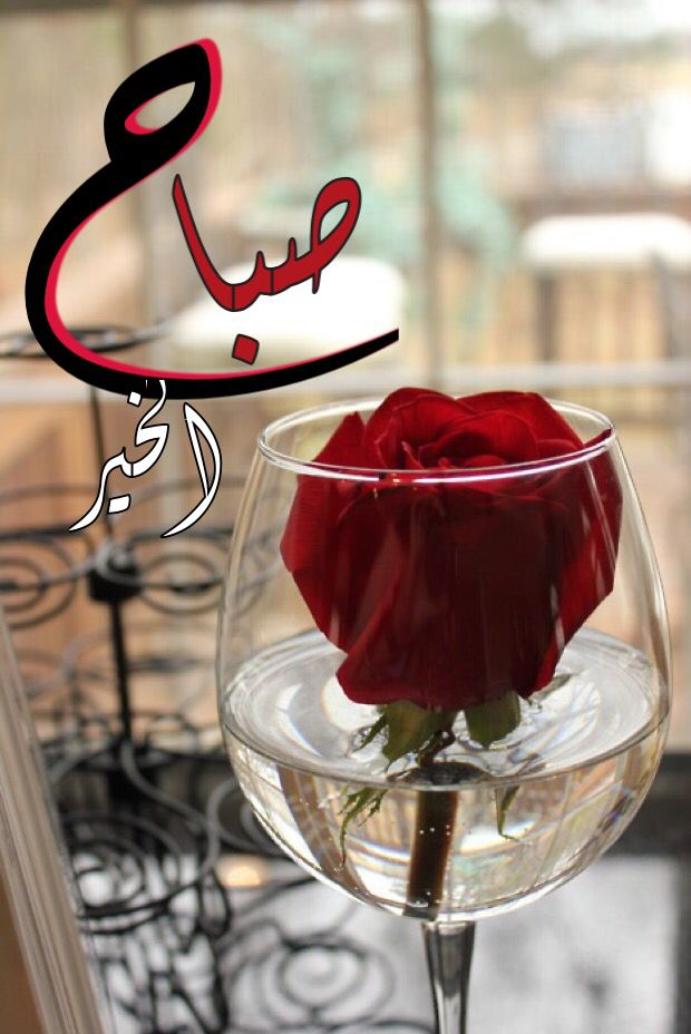 بالصور صور صباح ومساء الخير , الناس الذوق بتبان من رسايلها 2390 5
