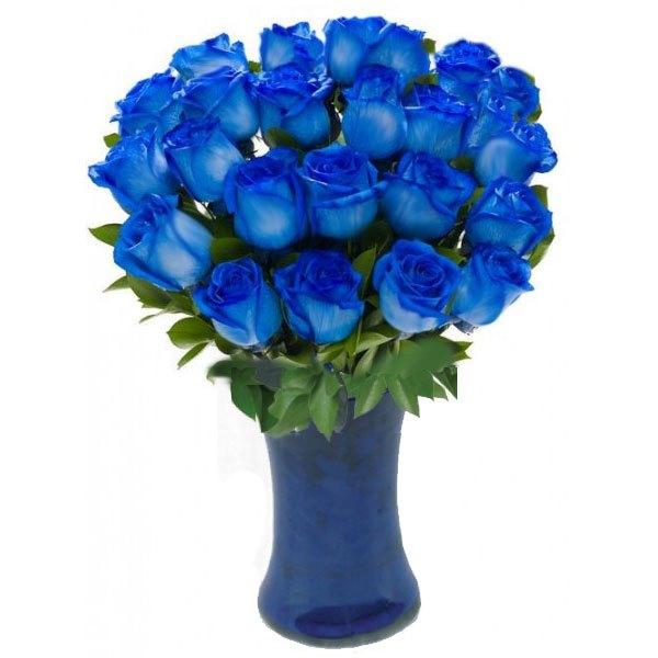 صور ورد ازرق جمال الازهار بلون جديد نايس