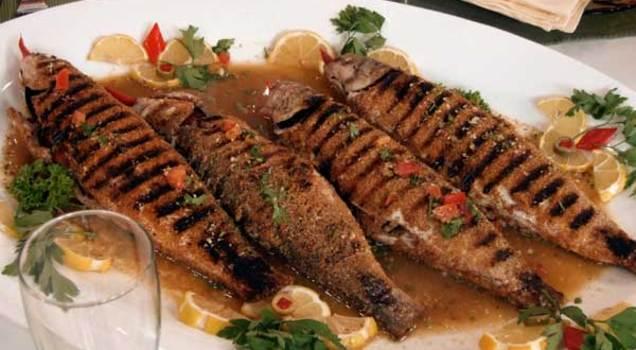 بالصور صور سمك مشوي , الفسفور و جمال الماكولات البحرية 2474 2
