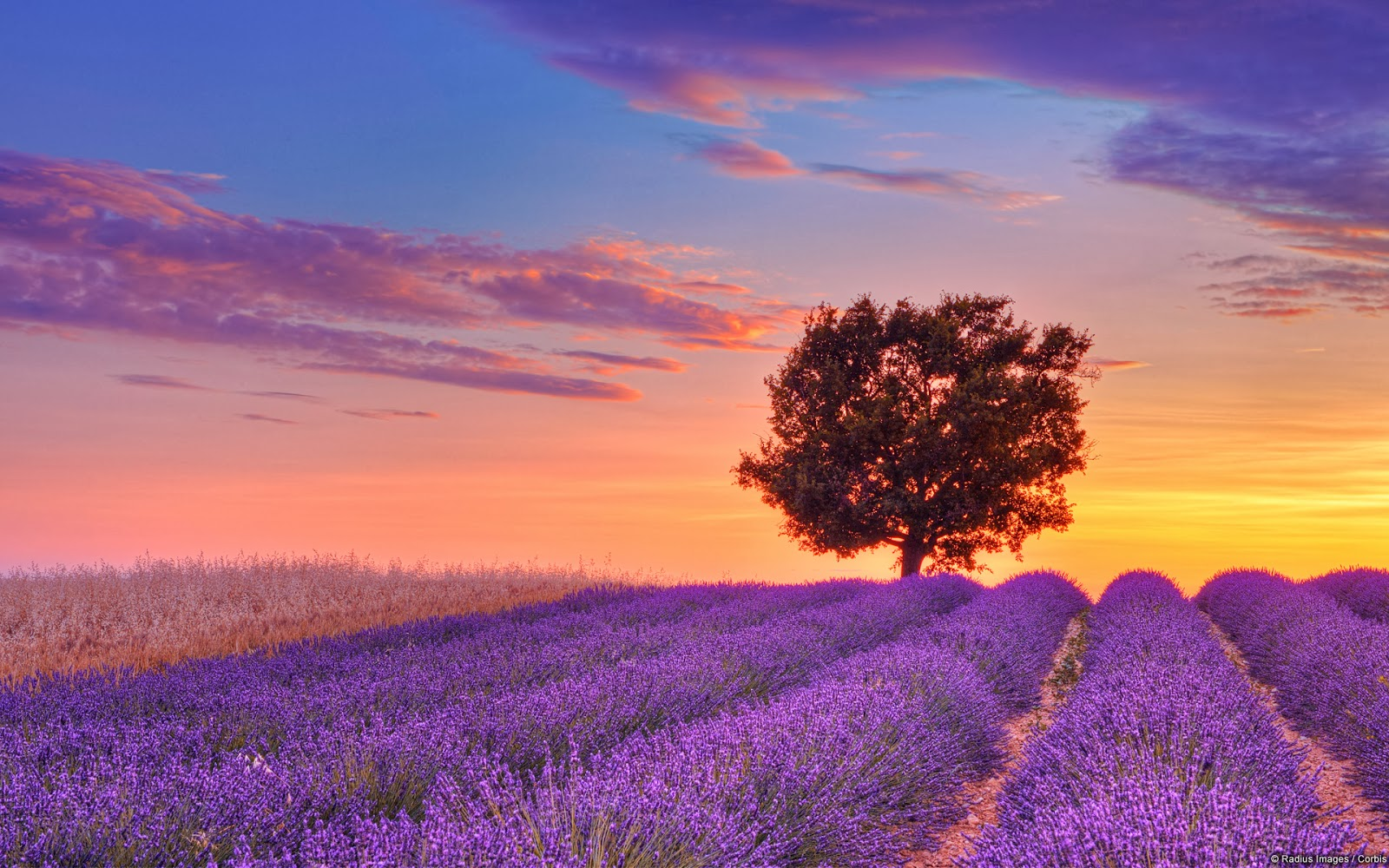 صوره صور مناظر خلابة , اجمل مشاهد طبيعية ممكن تشوفها