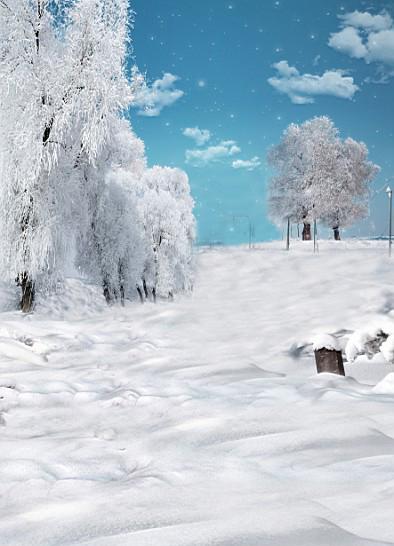بالصور صور بياض الثلج , الجليد الابيض و جمال الطبيعة القاسية 2592 3