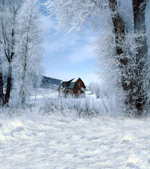 بالصور صور بياض الثلج , الجليد الابيض و جمال الطبيعة القاسية 2592 4