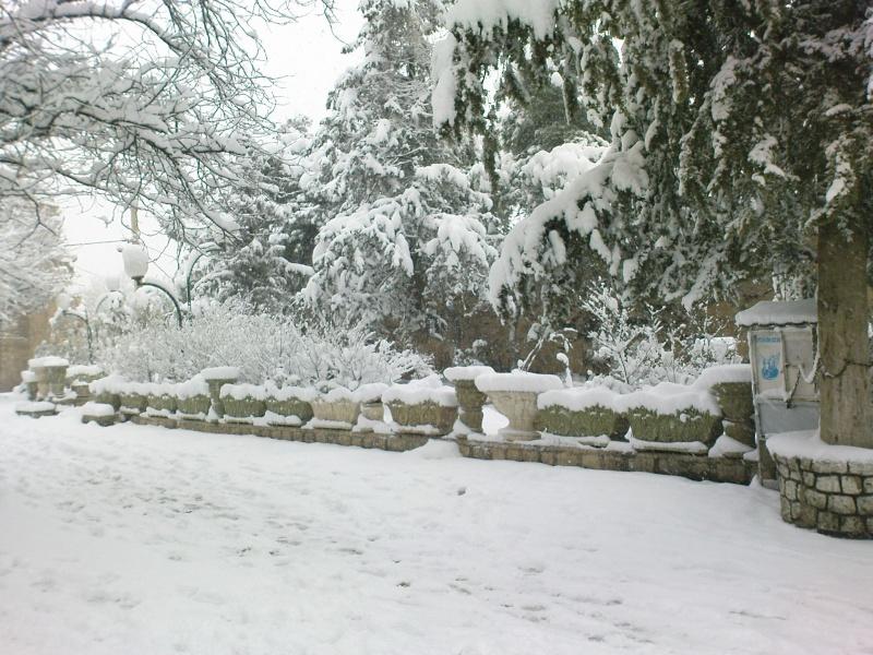 بالصور صور بياض الثلج , الجليد الابيض و جمال الطبيعة القاسية 2592 5