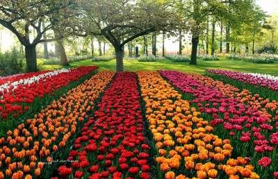 بالصور صور مناظر خلابه , جمال الطبيعة هبة من الله 2626 11