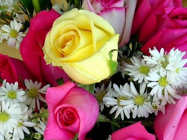 بالصور صور اجمل الورود , ابعت لحبايبك بوكية ازهار يجنن 2660 2