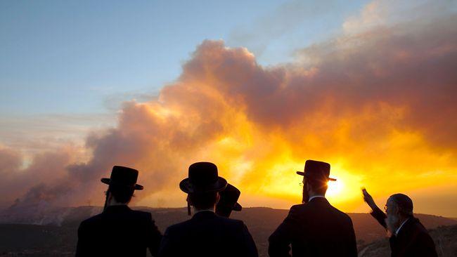 بالصور صور حريق اسرائيل , فاجعة فى الدولة الصهيونية شوف انتقام ربنا 2737 3