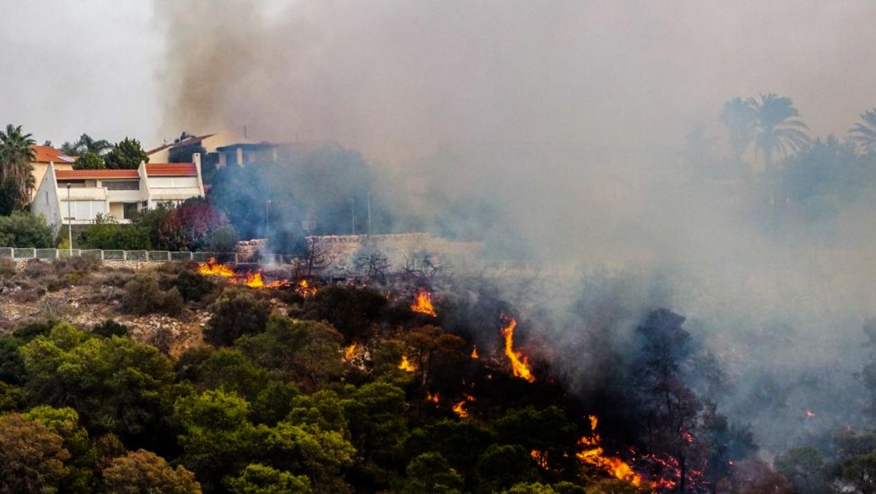 بالصور صور حريق اسرائيل , فاجعة فى الدولة الصهيونية شوف انتقام ربنا 2737 9