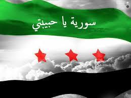 بالصور صور عن سوريا , بلاد الشام و جمال اراضيها 1831 4