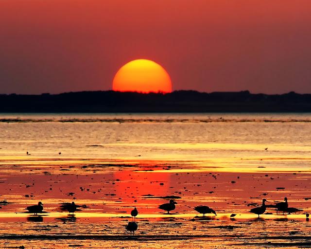 بالصور صور غروب الشمس , منظر بدهشك من روعة جمالة 1860 4