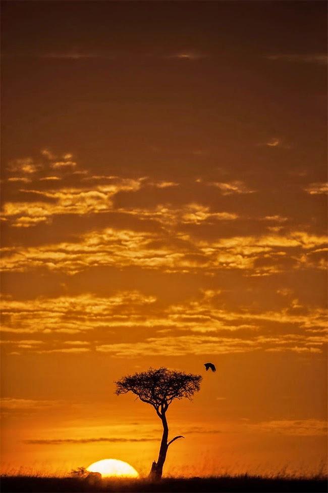 بالصور صور غروب الشمس , منظر بدهشك من روعة جمالة 1860 8