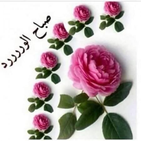 صورة صور لصباح الخير , صبح علي اهلك واصحابك